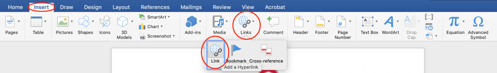 Insert menu from Microsoft Word with Link option emphasized