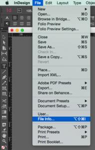 Screenshot of the file info option in the File menu