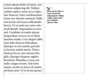 Screenshot of the mouse pointer with the snippet of text